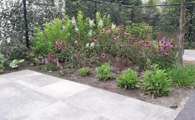 Aanleg complete tuin, Asten, 13